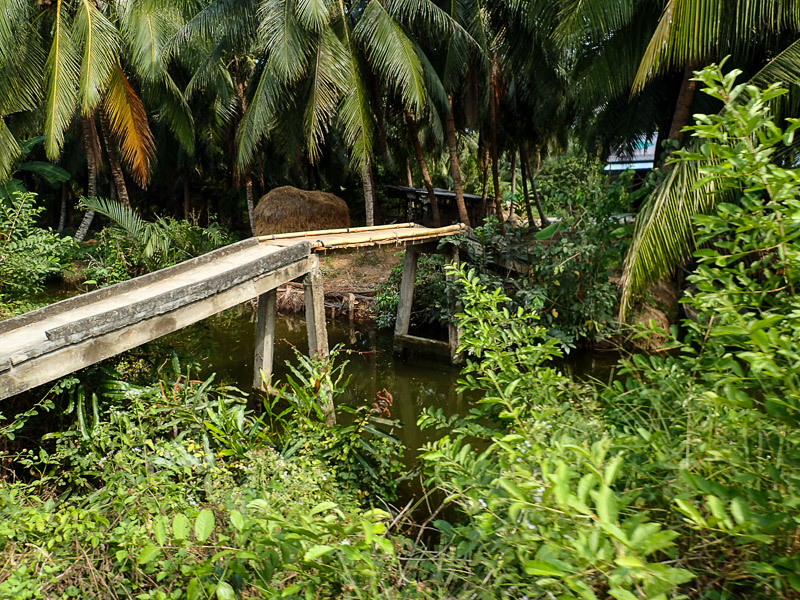 Things to do in Vietnam: Mekong Delta Bridge