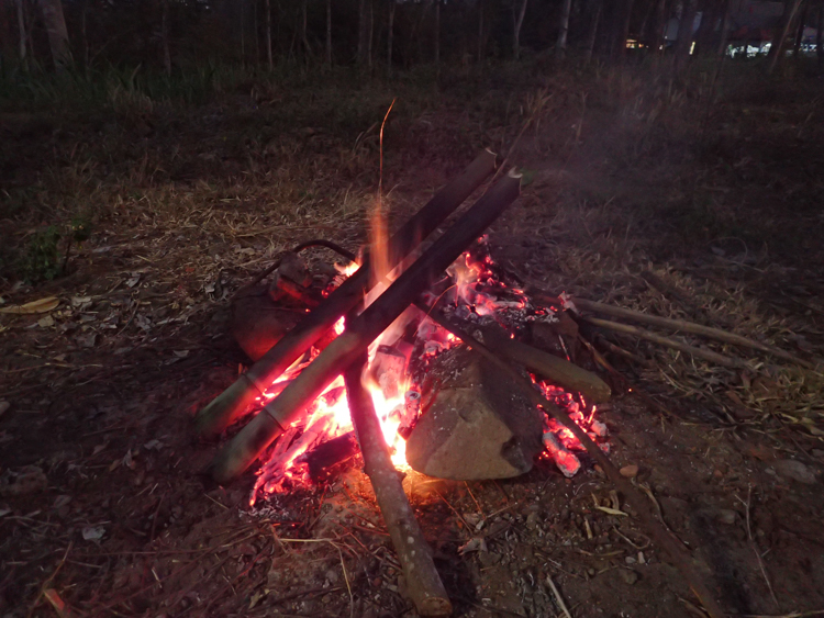 Rice cooking in bamboo on fire