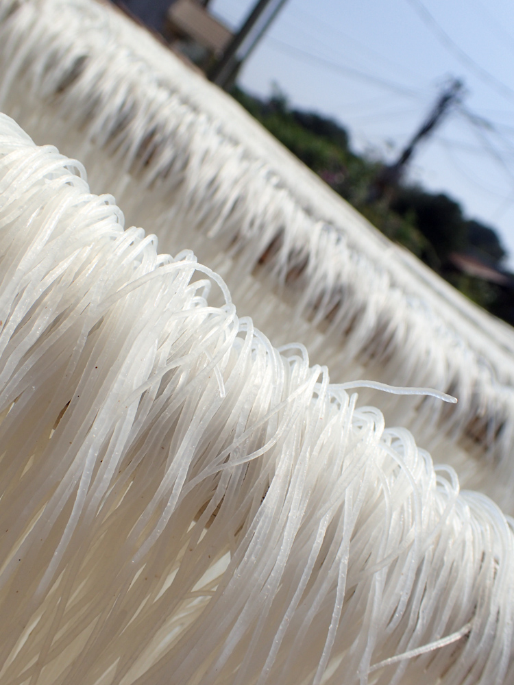 close up of noodles drying