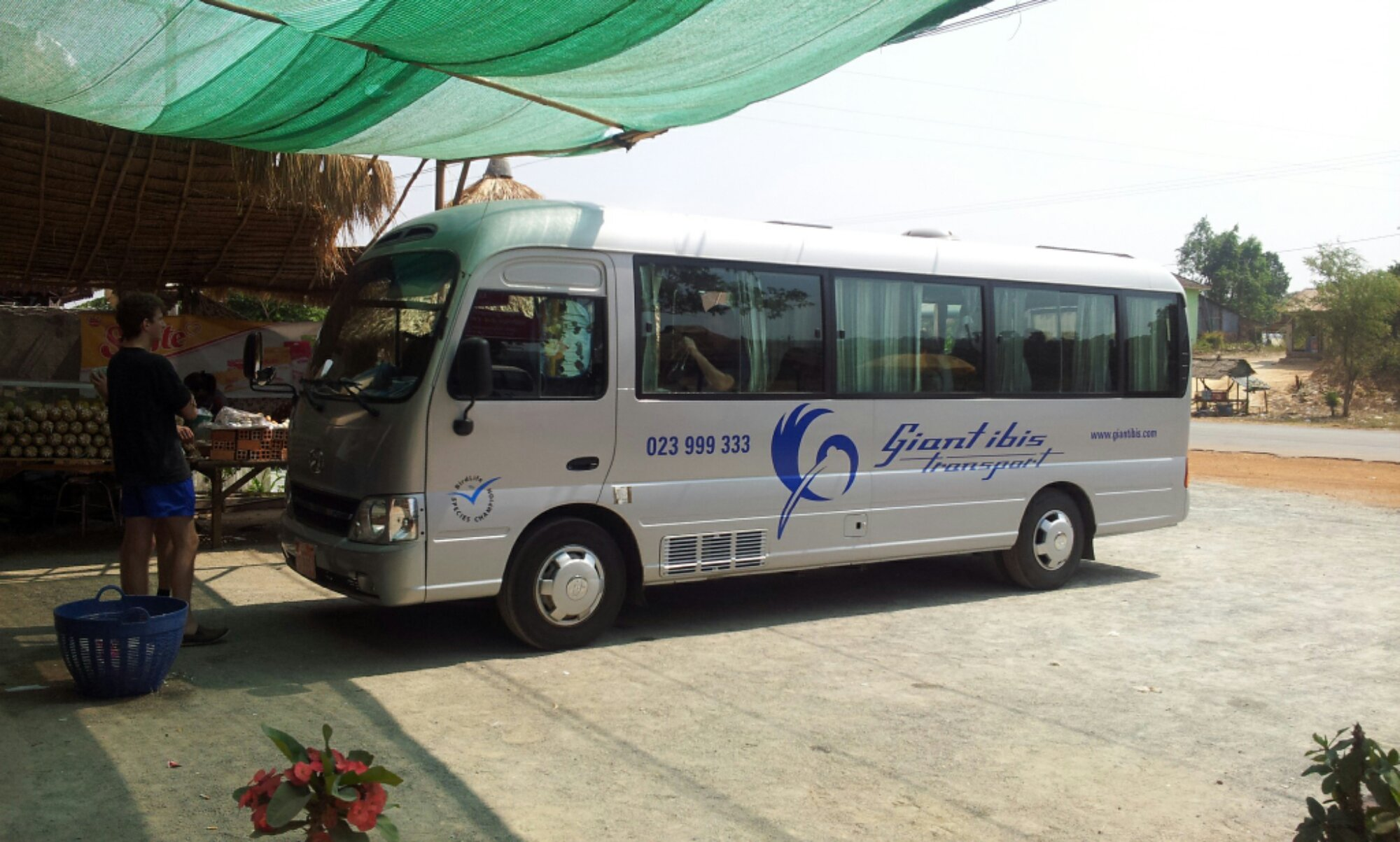Cambodia by bus: Mekong Express and Giant Ibis Bus Review - Traveling German