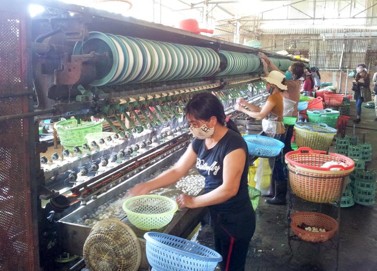 Silk Factory Vietnam